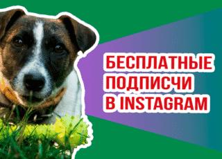 Бесплатная-накрутка-подписчиков-в-Инстаграме